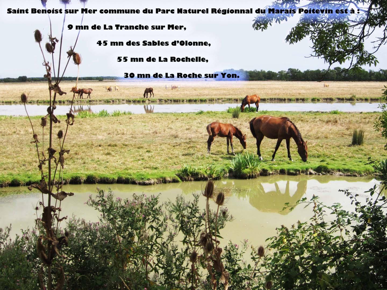 Marais-communal-1440 1020